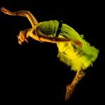 Pupil, Gallim Dance Co.